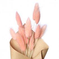 Сухоцвет Лагурус (Заячьи хвостики), цвет розовый,10 штук