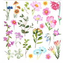 Набор наклеек ( стикеров ) Летние цветы, 20х20 см (23 наклейки)
