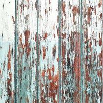 Виниловый безбликовый фотофон Дерево №32, 50*50 см