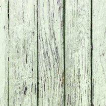 Виниловый безбликовый фотофон Дерево №34, 50*50 см