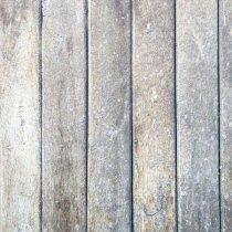 Виниловый безбликовый фотофон Дерево №36, 50*50 см