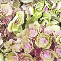 Виниловый безбликовый фотофон Цветы №2, 50*50 см