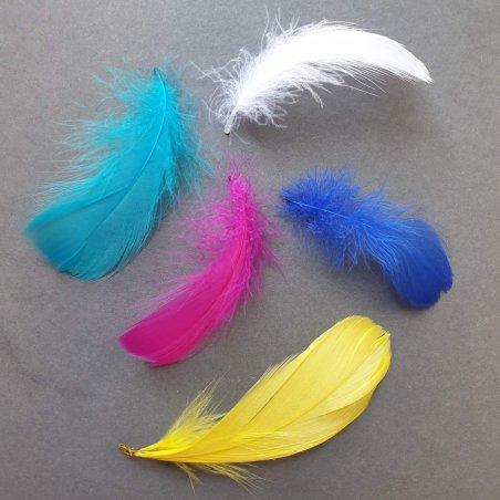 Перья яркие, цвет микс, 5 штук