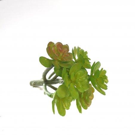 Суккулент маленький, веточка, 6 см