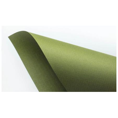 Бумага для пастели TINTORETTO 20х35 см, 250 г/м2 , цвет васаби (ceylon wasabi)