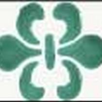 Стеклоэффект гель 25мл Зеленый 114470001
