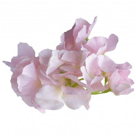 Соцветие гортензии, 15 см, цвет бледно-розовый