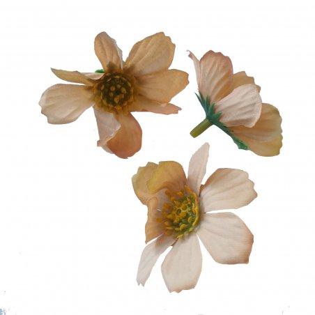 Цветы космеи, 3 штуки, цвет капучино